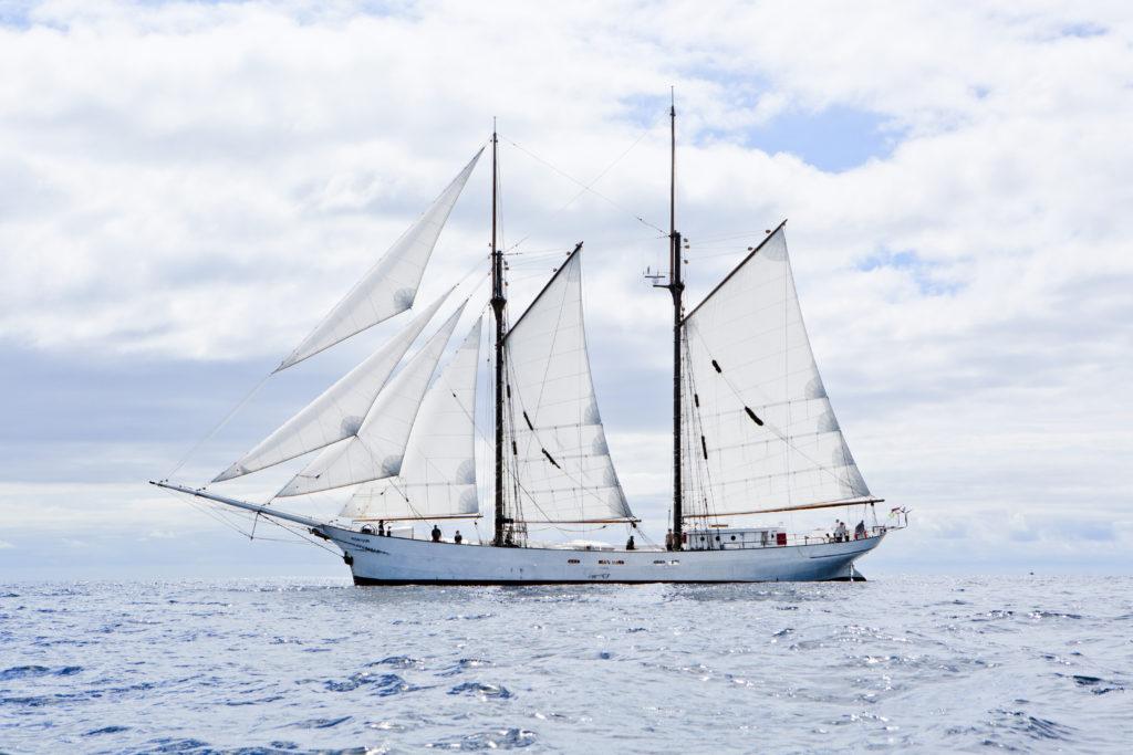 Timbercoast – Cargo Under Sail